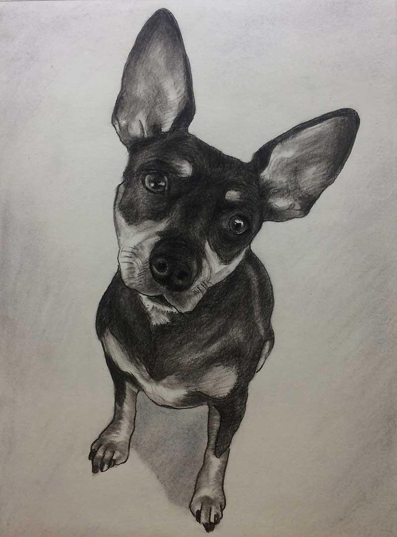 Hunde Kunst