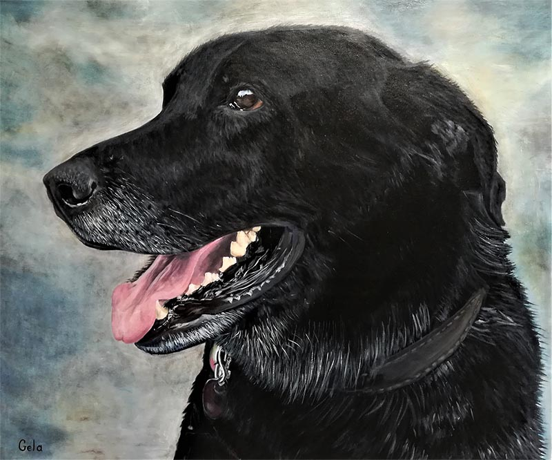 custom oil portraot of a black dog blue background