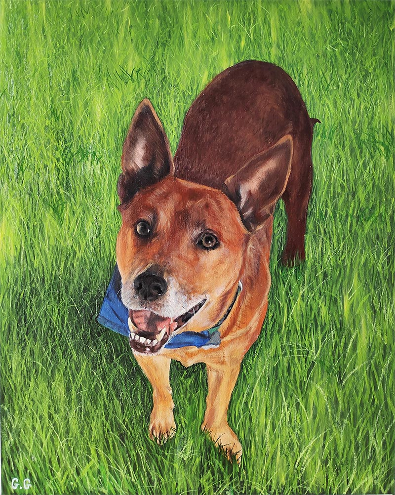 handmade oil painting of brown dog in grass
