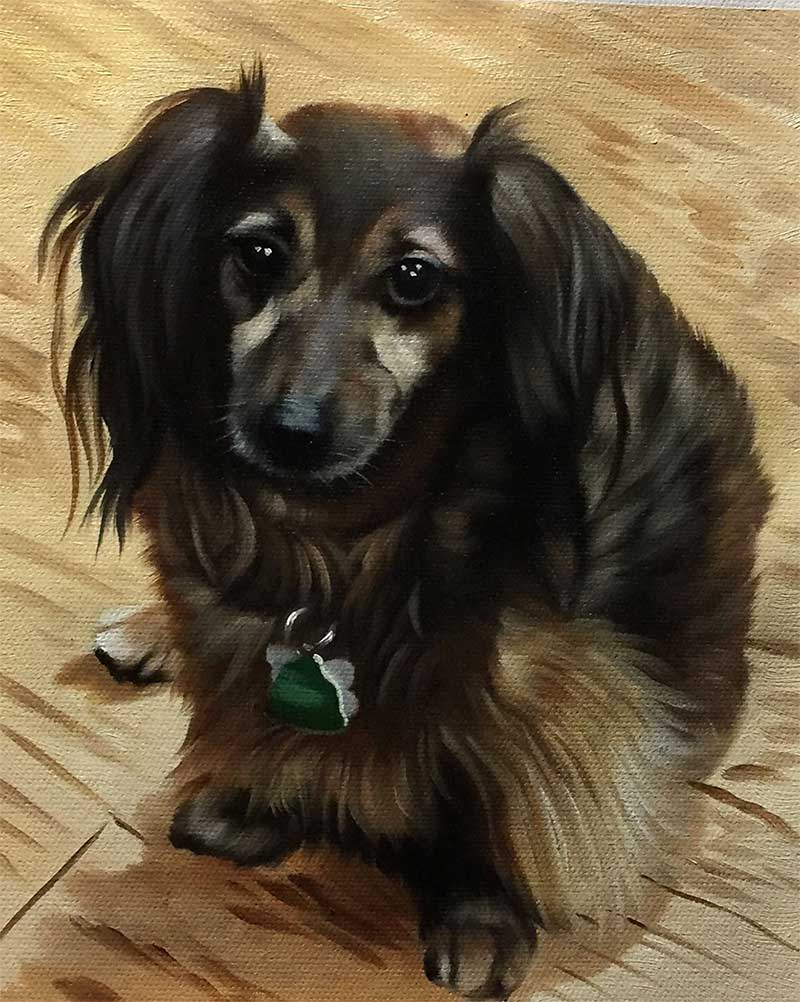 an oil painting of a tiny dog with long black brown hair