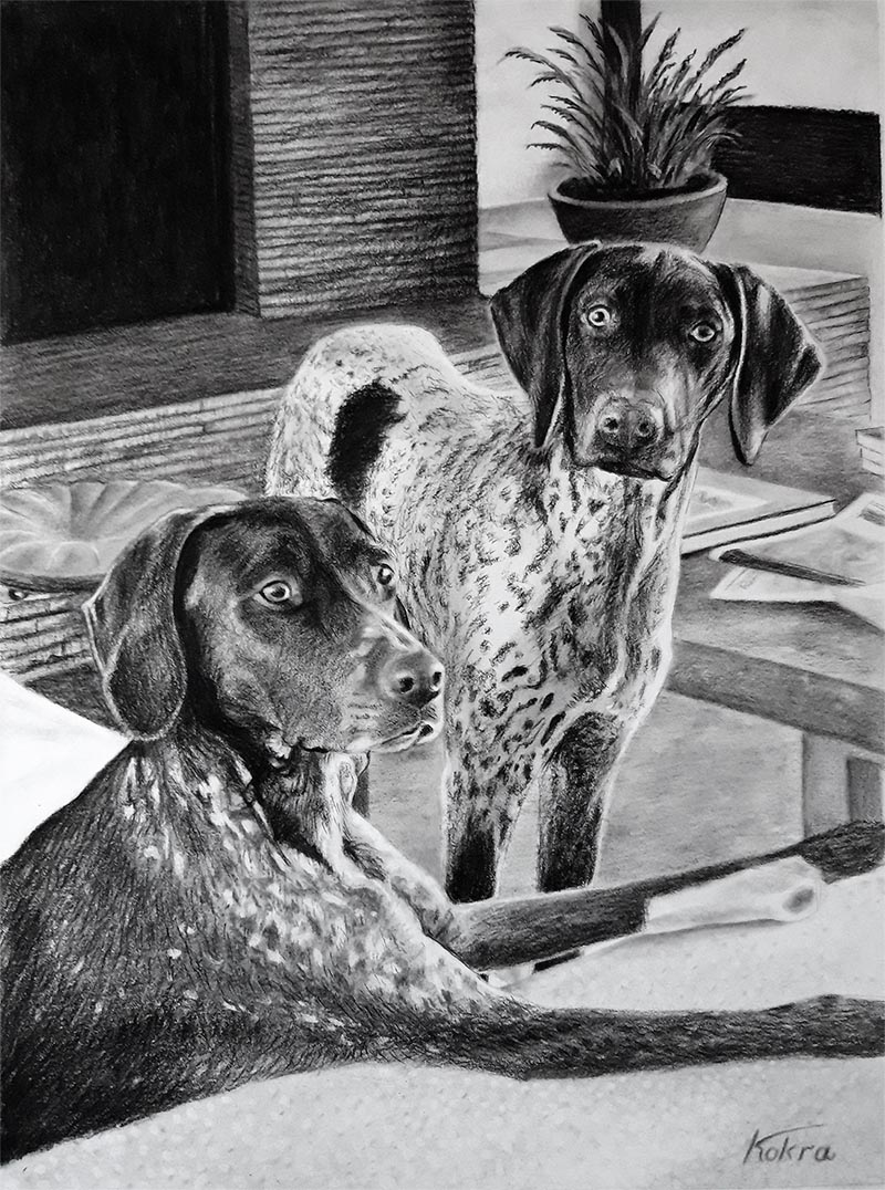i ritratti di cani su tela