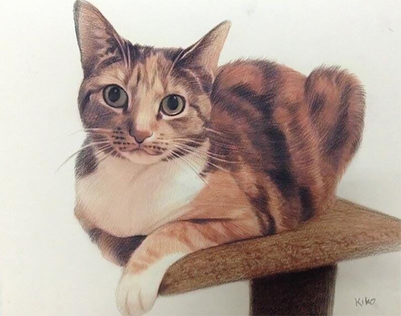 i ritratti di gatti su tela