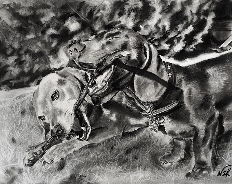 pets charcoal portrait