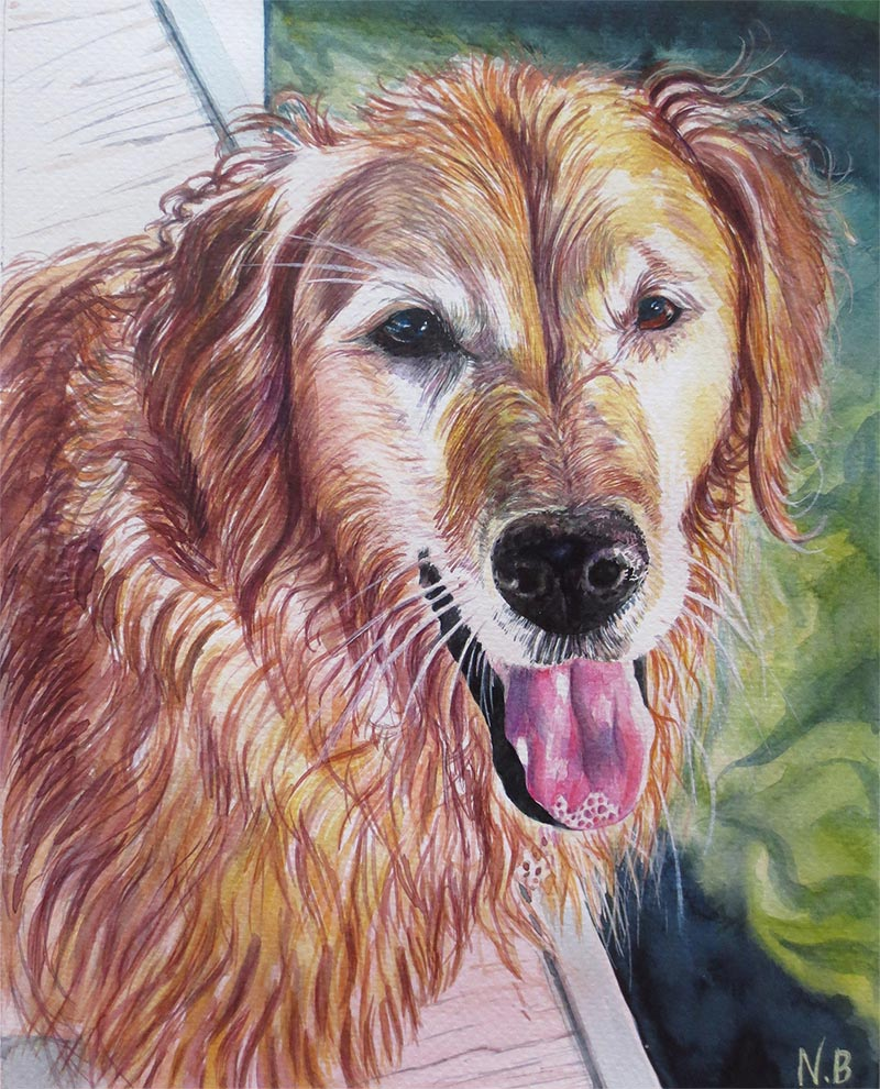 custom watercolor painting of Golden dog