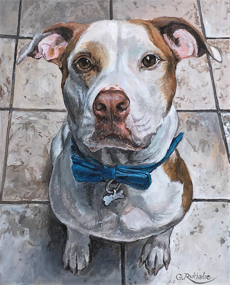 custom acrylic painting of Jack Russell Terrier