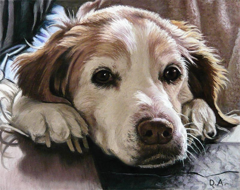 pastel portrait of a dog