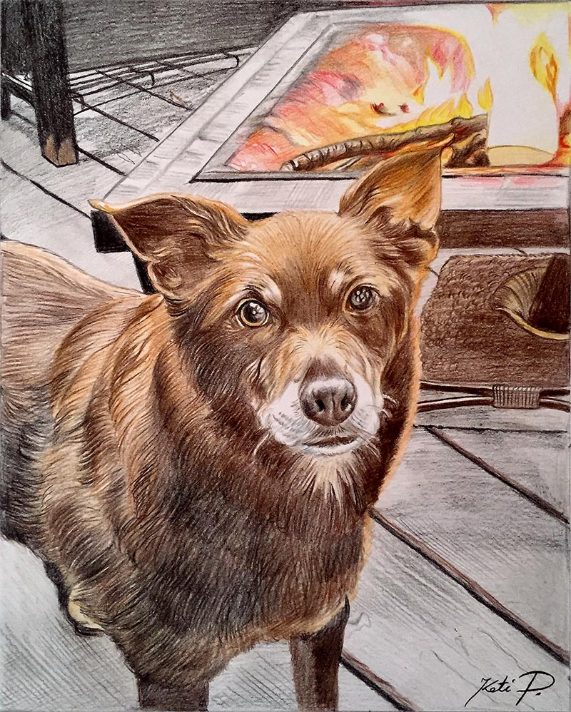 custom colored pencil of brown dog in front of fireplace
