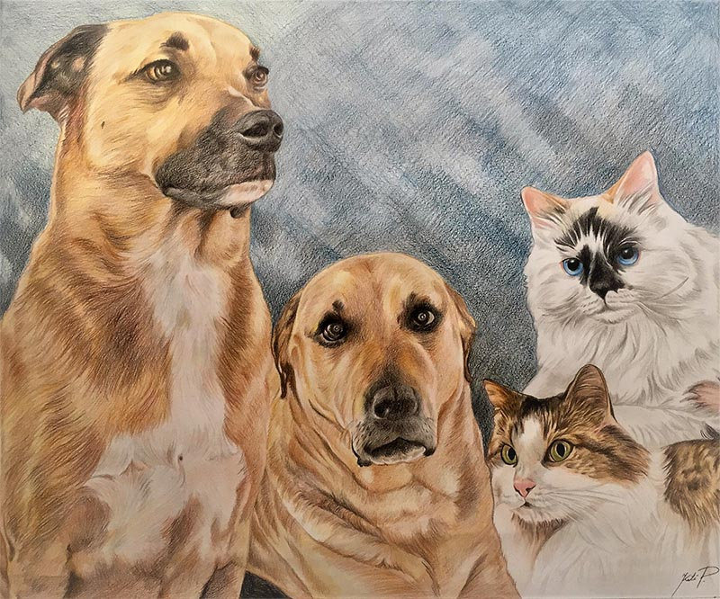 custom colored pencil pet portrait of two dogs and two cats