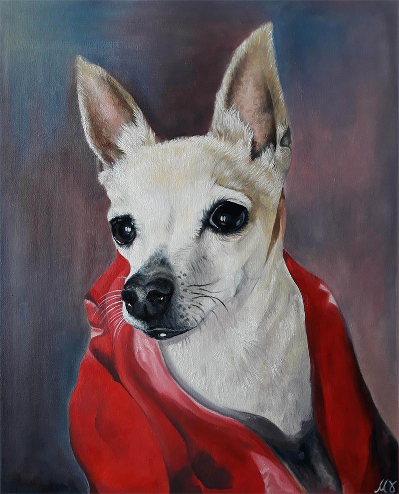 handmade oil painting of chichuachua wearing towel