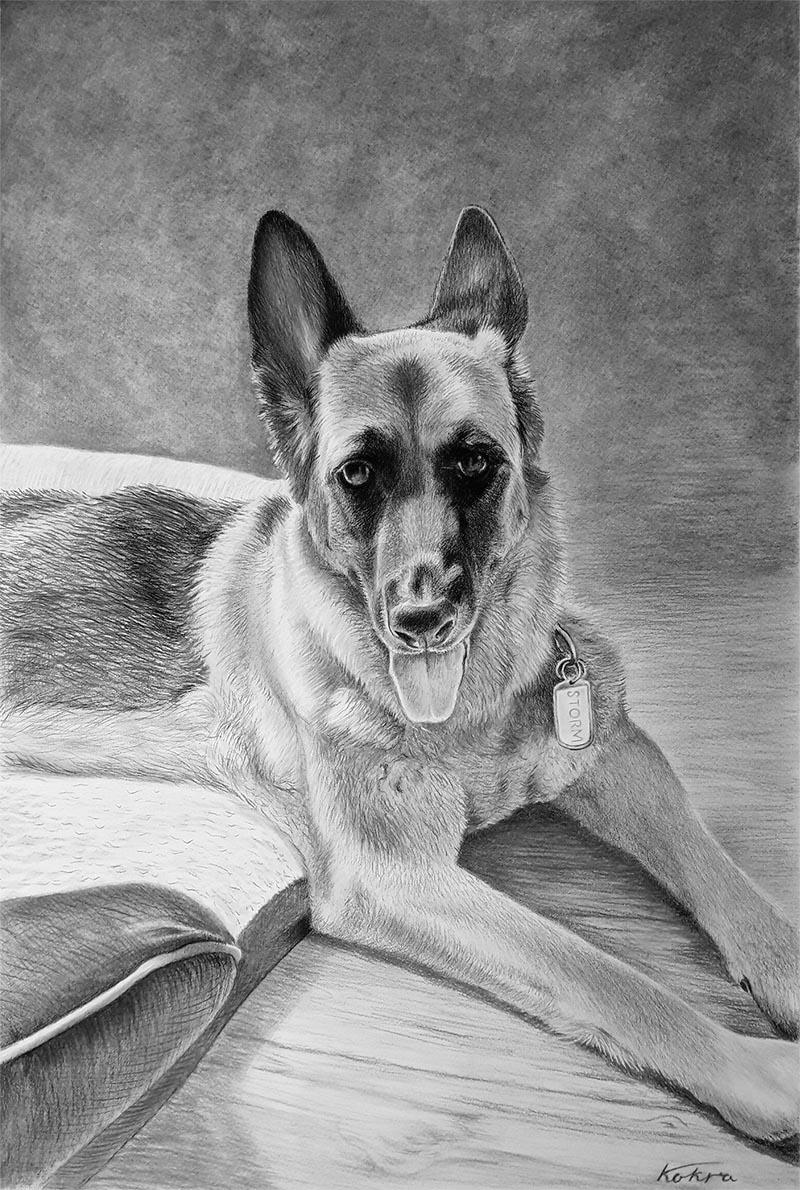 Portrait personnalisé de chien