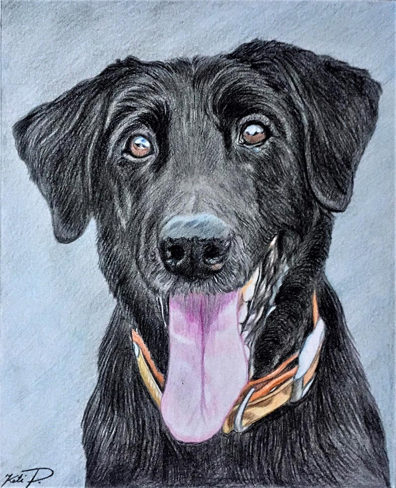 colored pencil drawing of a black dog with tongue out