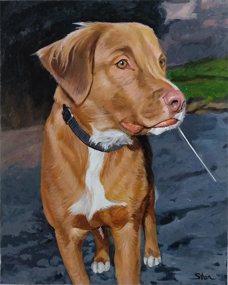 custom oil portrait of brown lab