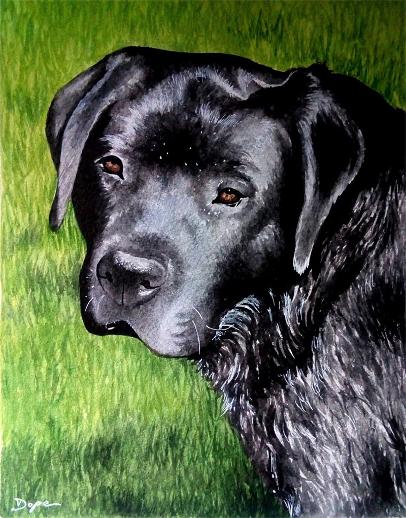 custom watercolor painting of black dog on grass