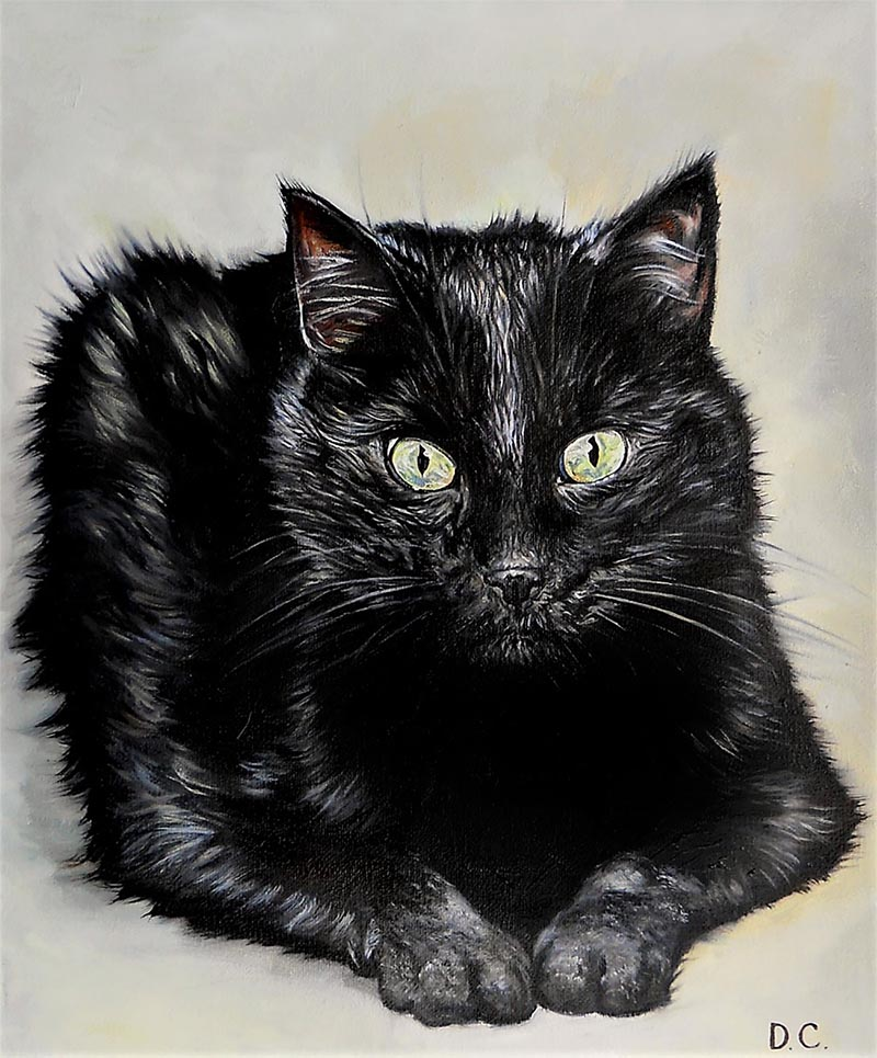 custom oil painting of short haired black cat