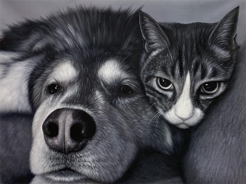 friends portrait dog and cat