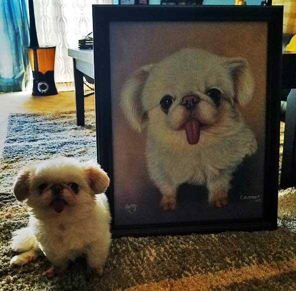 cute white dog custom art