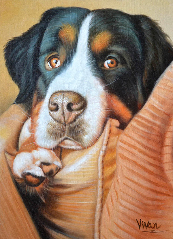 custom acrylic painting of man's best friend, St. Bernard.