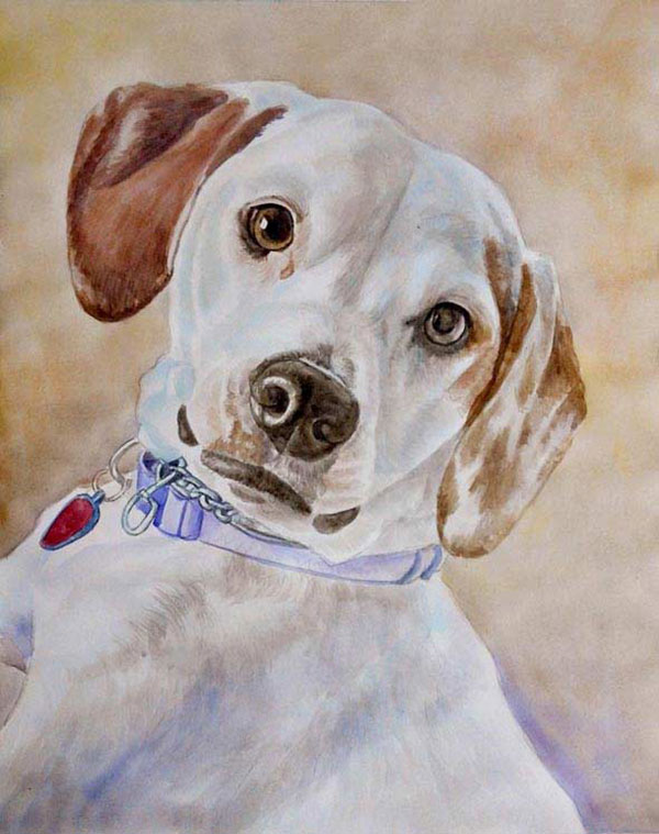 dog portraits on canvas in watercolor