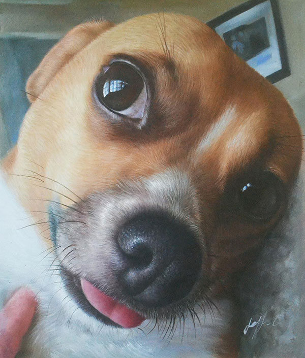 close-up dog painting