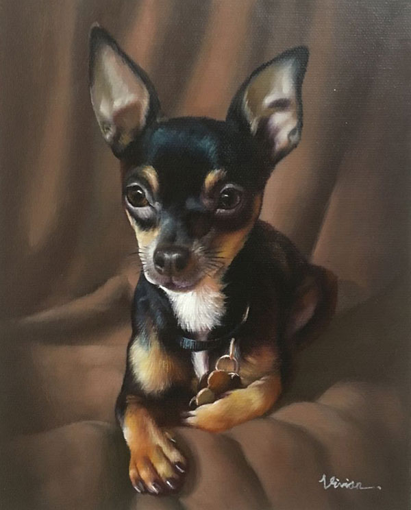 lovely pet dog portrait