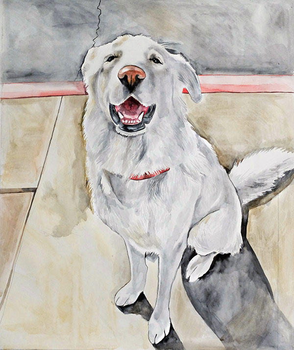 custom watercolor painting of happy white dog