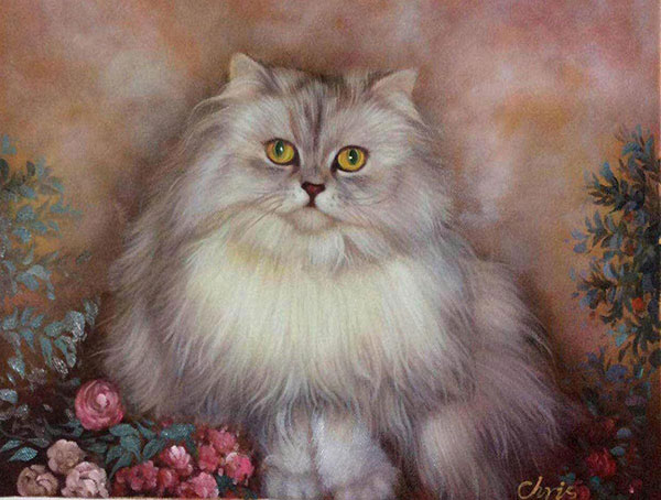 Custom oil handmade portrait of a long hair grey cat
