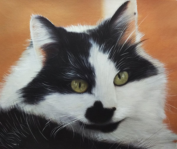 Custom oil portrait of a black and white cat with green eyes