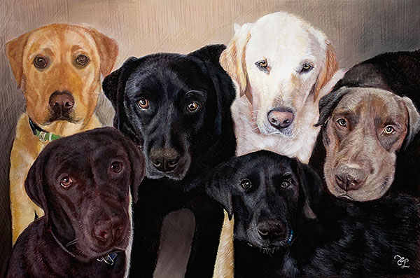 custom colored pencil pet drawing of 6 dogs