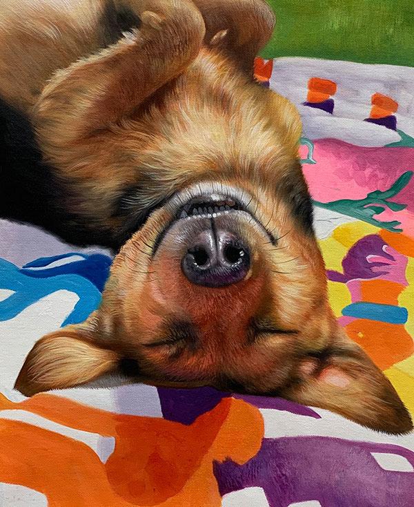 playful smiling dog