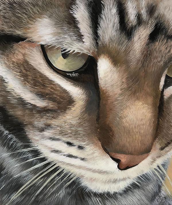 close up pastel portrait of a cat