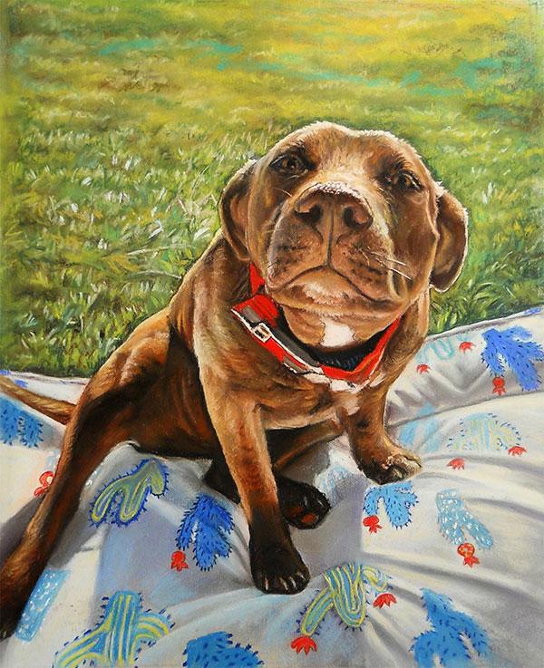 pastel pet portrait of a dog