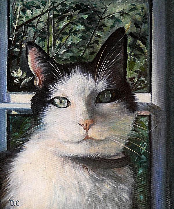 retratos de mascotasretratos de mascotas