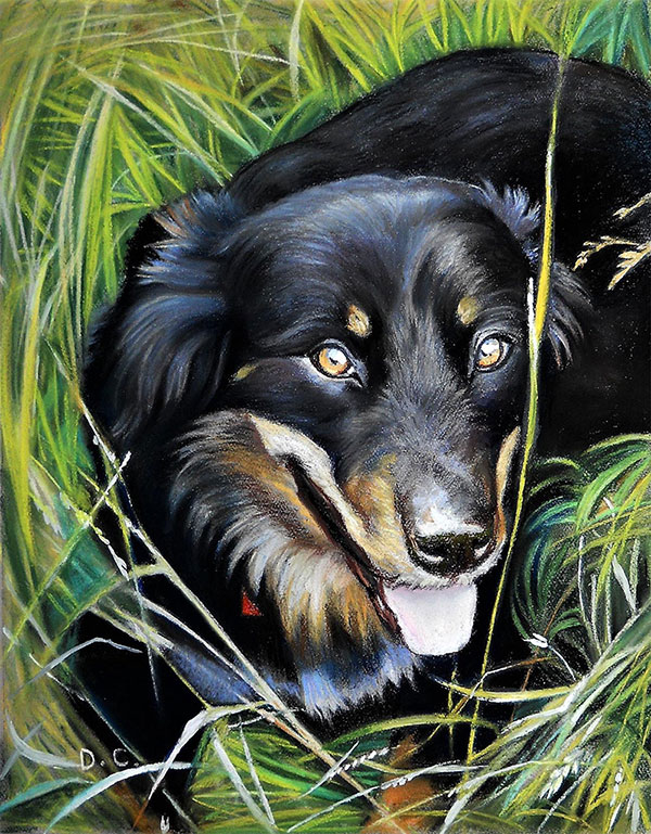 pastel portrait of a dog lying in grass
