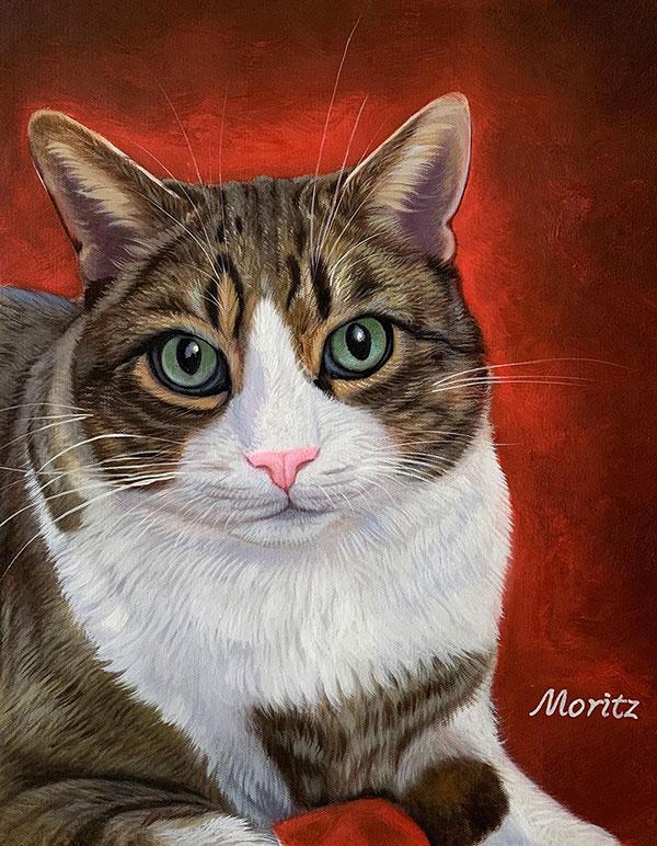 el mejor regalo para los amantes de gatos