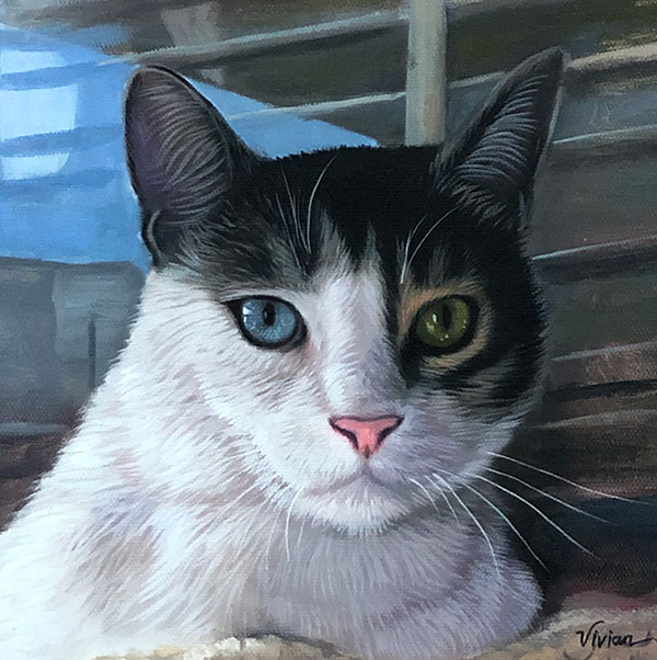 cat painting in oil with 2 different eye colors