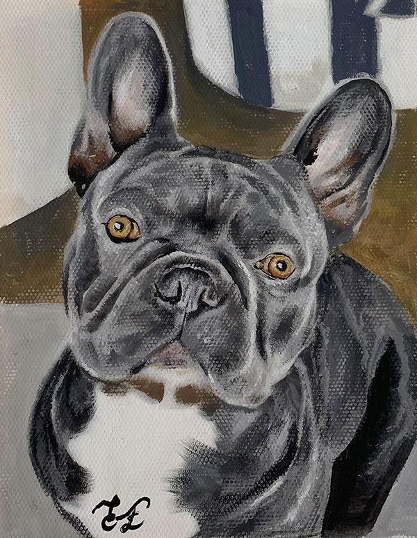 custom pastel portrait of black pug