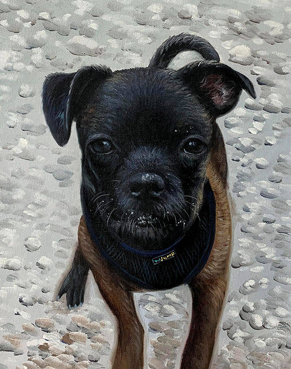 Beautiful handmade oil painting of a dog