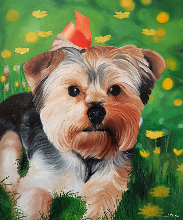 oil painting of a Yorkie dog