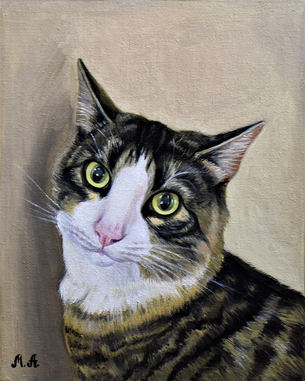 custom oil painting of a cat with solid background