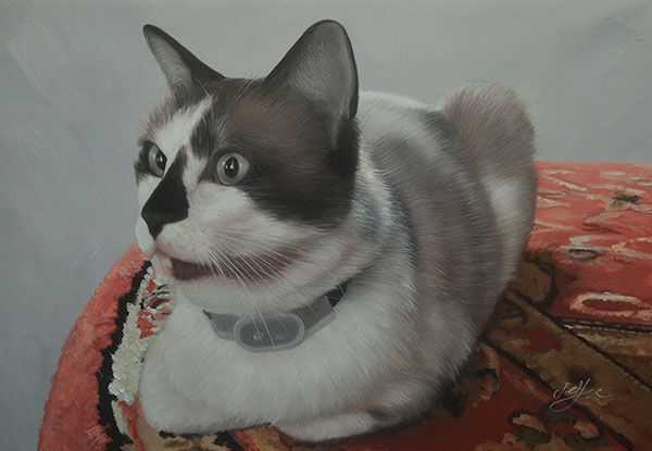 oil painting og cat laying on table