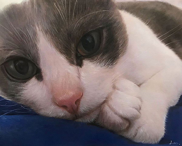 an oil painting close up of a cat with beautiful eyes
