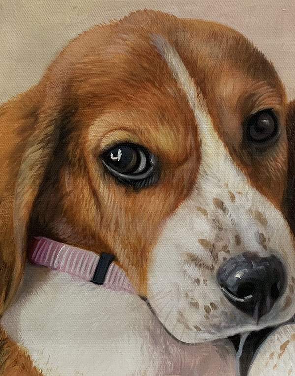 Close up realistic artwork of a puppy