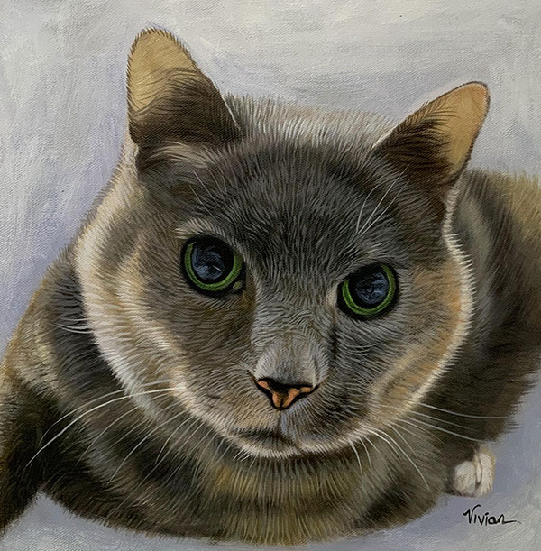 Close up oil painting of a cat with a solid background