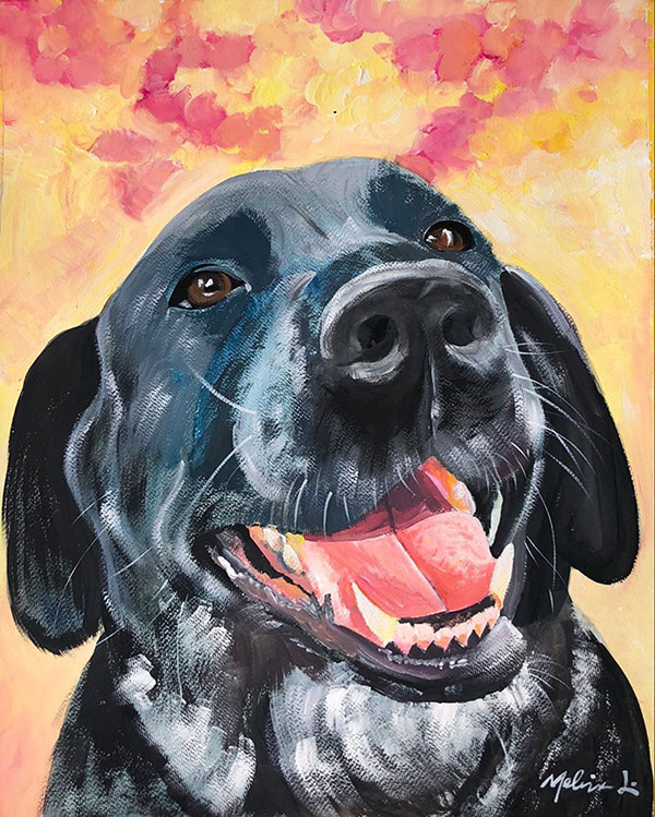 colorful pastel pet portrait of a dog