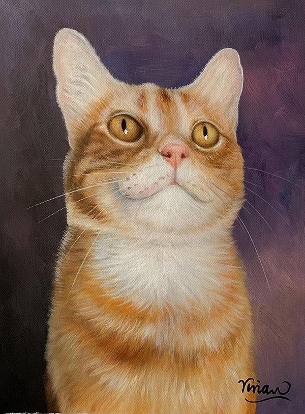 Custom oil handmade portrait of orange cat purple background