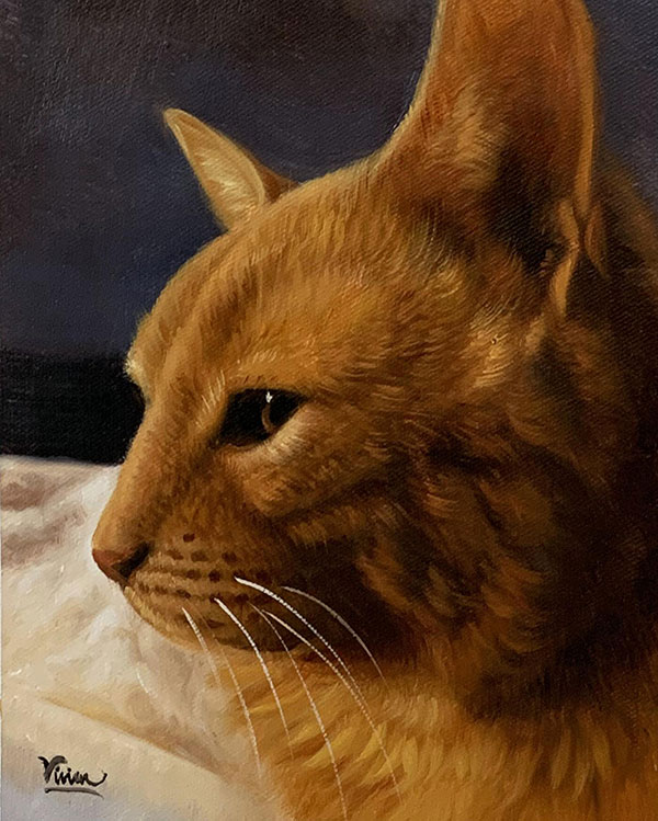 Custom close up acrylic painting of a cat