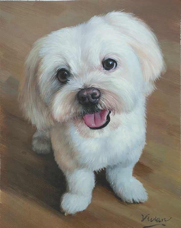 Cute white puppy portrait painting