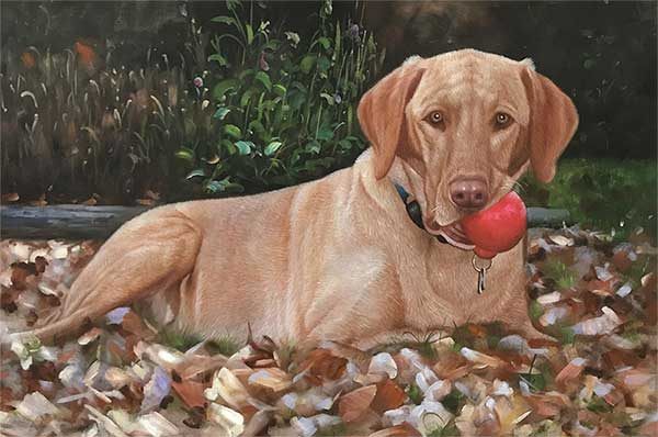 oil painting of a chocolate lab chewing on a red ball