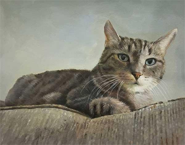 Ritratto ad olio gatto da fotografia