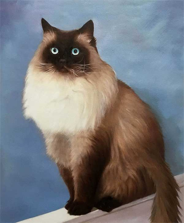 an oil painting of a beautiful cat with blue eyes